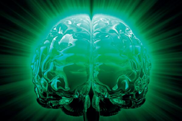 AWXII - Brain